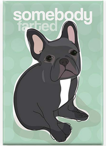 Somebody Farted Black French Bulldog Fridge Magnet