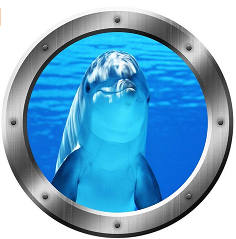 Dolphin Porthole Wall Decal