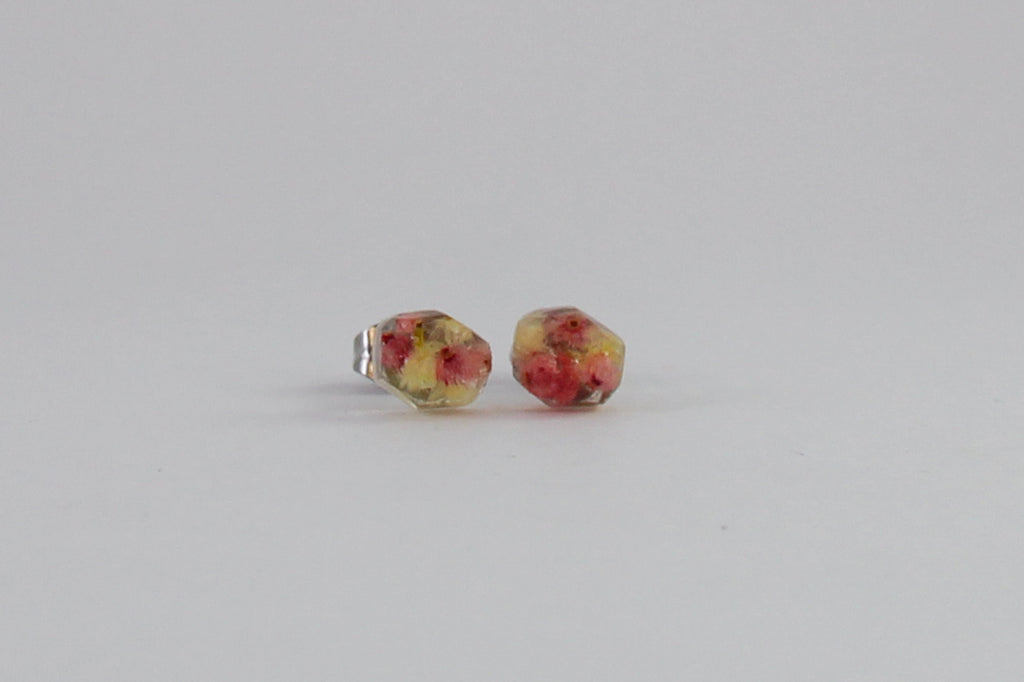 Verticordia Faceted Stud Earrings