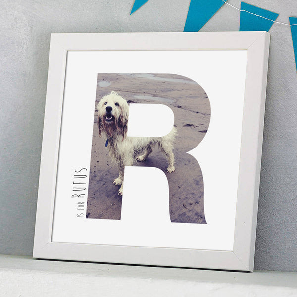 Personalised Framed Photograph Pet Print