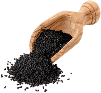 Black Seed Oil 'Strong' | 90 Capsules | The Blessed Seed® - Oceans Alive Health