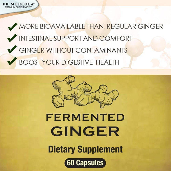 Fermented Ginger with Benegut - Dr Mercola 60 Caps