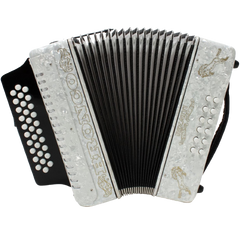 Rizatti Bronco RB31GW Diatonic Accordion