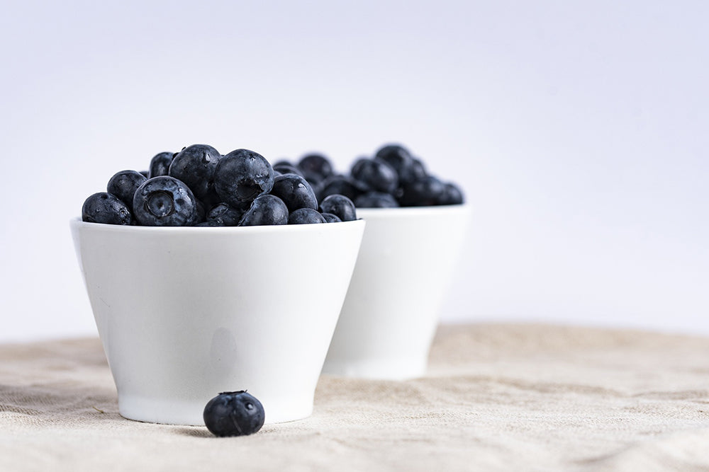 Should Dogs Eat Blueberries?