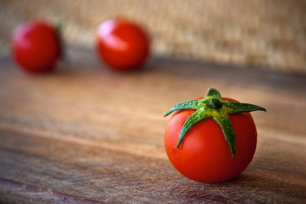 Should Dogs Eat Tomatoes?