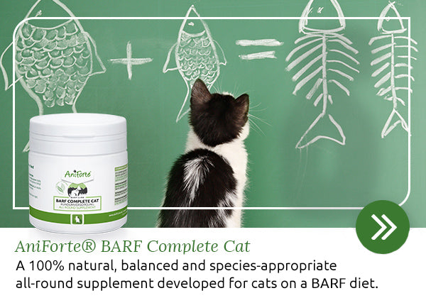 BARF Complete for cats