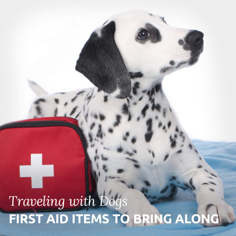 First aid kit for your holiday