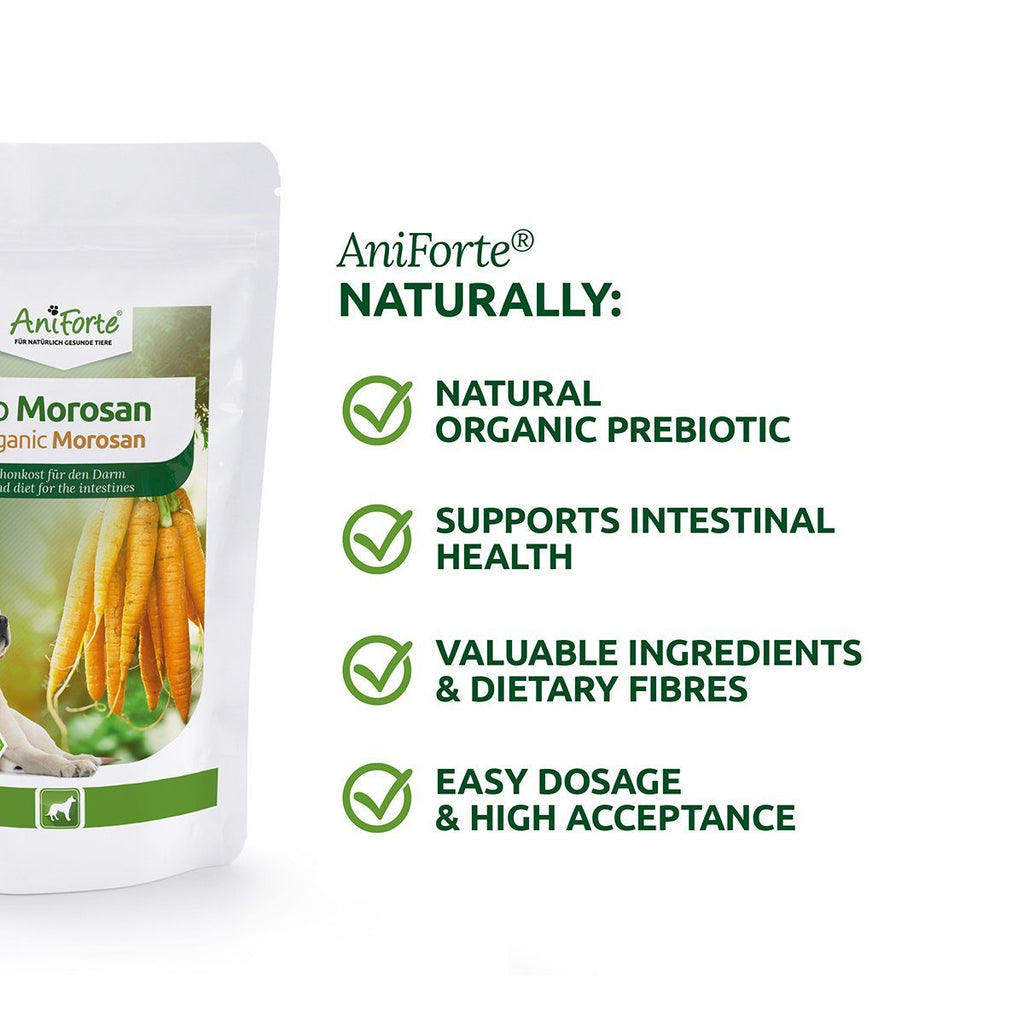 Aniforte Organic Morosan Bland Diet for the intestines for Dogs