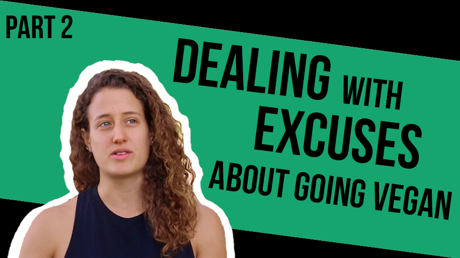 Helping People Overcome The Excuses About Going Vegan