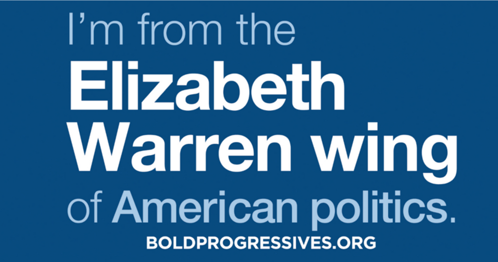 """I'm from the Elizabeth Warren wing of American politics"" magnet"