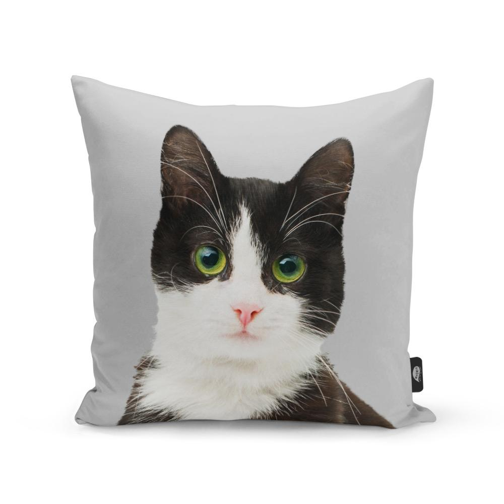 christmas gifts for cat