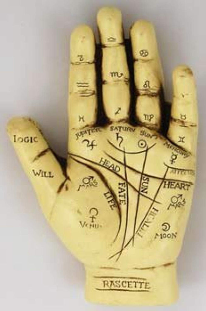 NEW Palmistry Hand Model Resin Sculpture Fortune Telling Palm Reading, , FESSONLINE, FESSONLINE