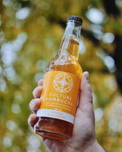 Load image into Gallery viewer, ginger kombucha