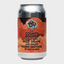 Load image into Gallery viewer, County Bounty Soda 24-pack