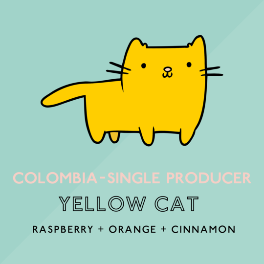 Colombian Yellow Cat Espresso