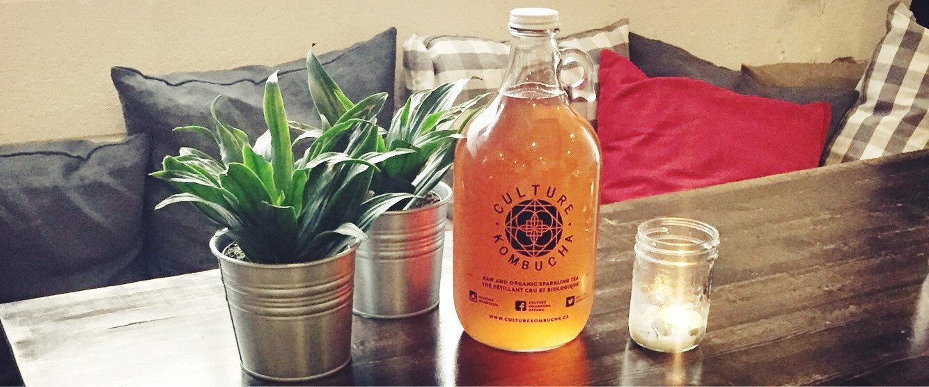kombucha ottawa local booch probiotics