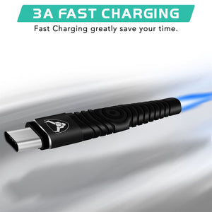 USB C Cable Fast Charge Type C 3.1 for Charging and Data Syncing - iSOUL