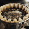 SCA - Brewing Foundation - Klatch Coffee Roasting