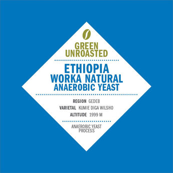 Green-Unroasted Ethiopia Worka Natural Anaerobic Yeast