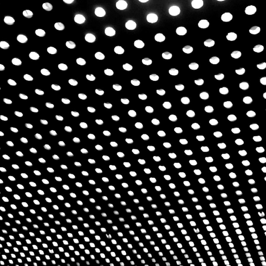 "BEACH HOUSE ""BLOOM"""