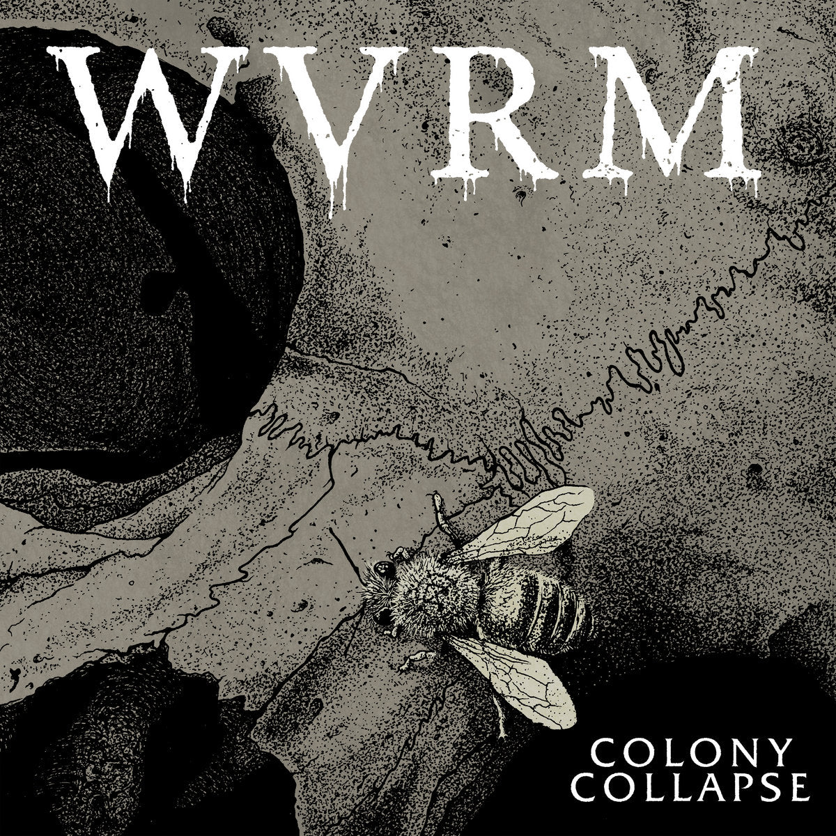 "WVRM ""COLONY COLLAPSE"""