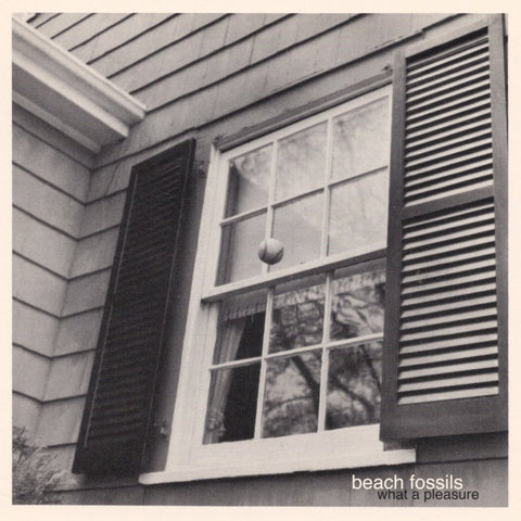 "BEACH FOSSILS ""WHAT A PLEASURE"""