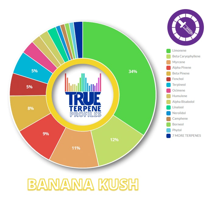 True Terpenes Banana Kush Profile 2ml-TrimBud.com