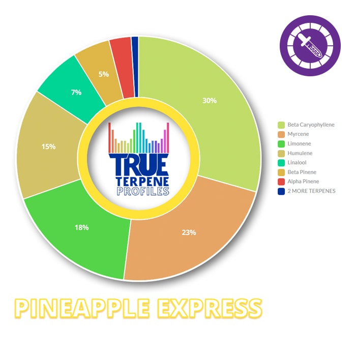 True Terpenes Pineapple Express Profile 2ml-TrimBud.com