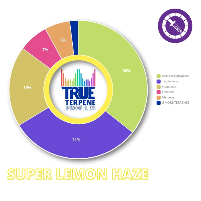True Terpenes Super Lemon Haze Profile 2ml-TrimBud.com