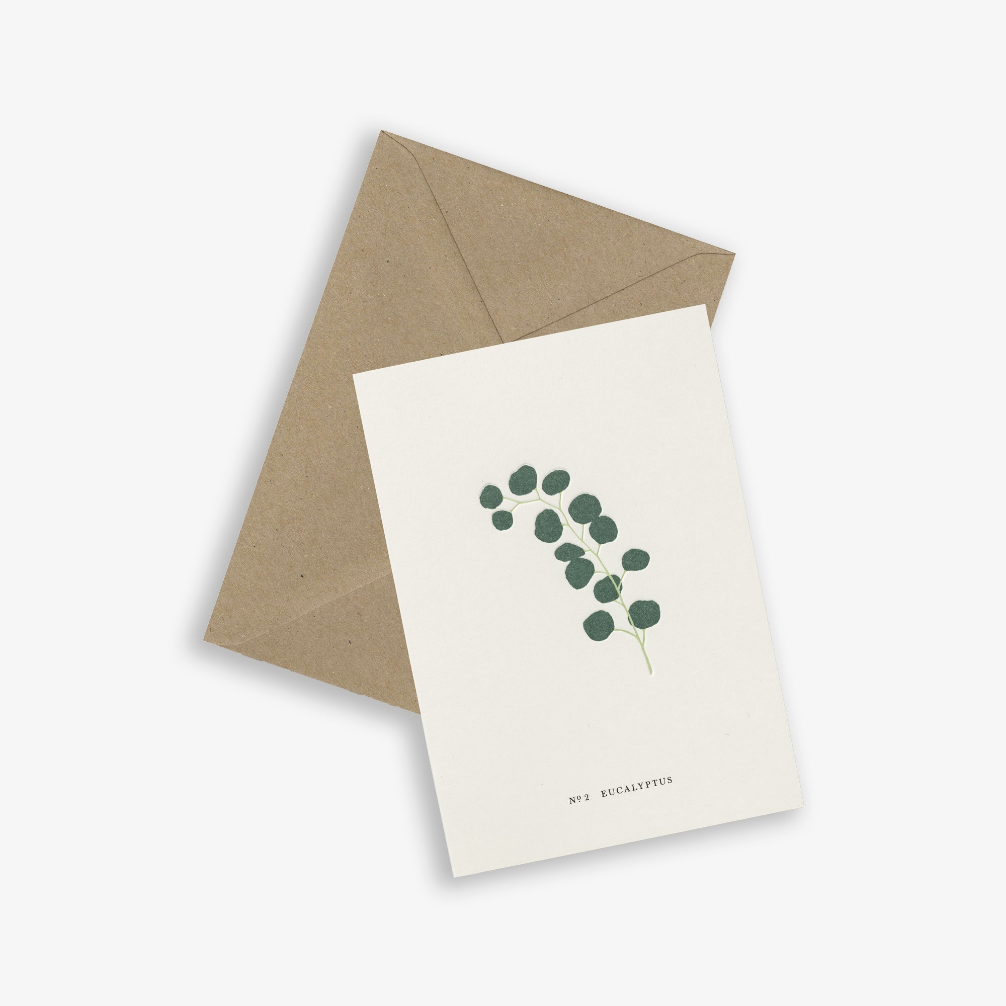 GREETING CARD / EUCALYPTUS