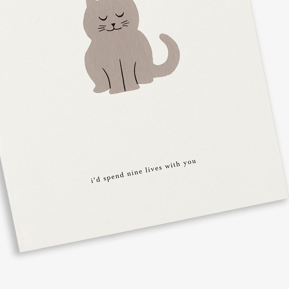 GREETING CARD / CAT
