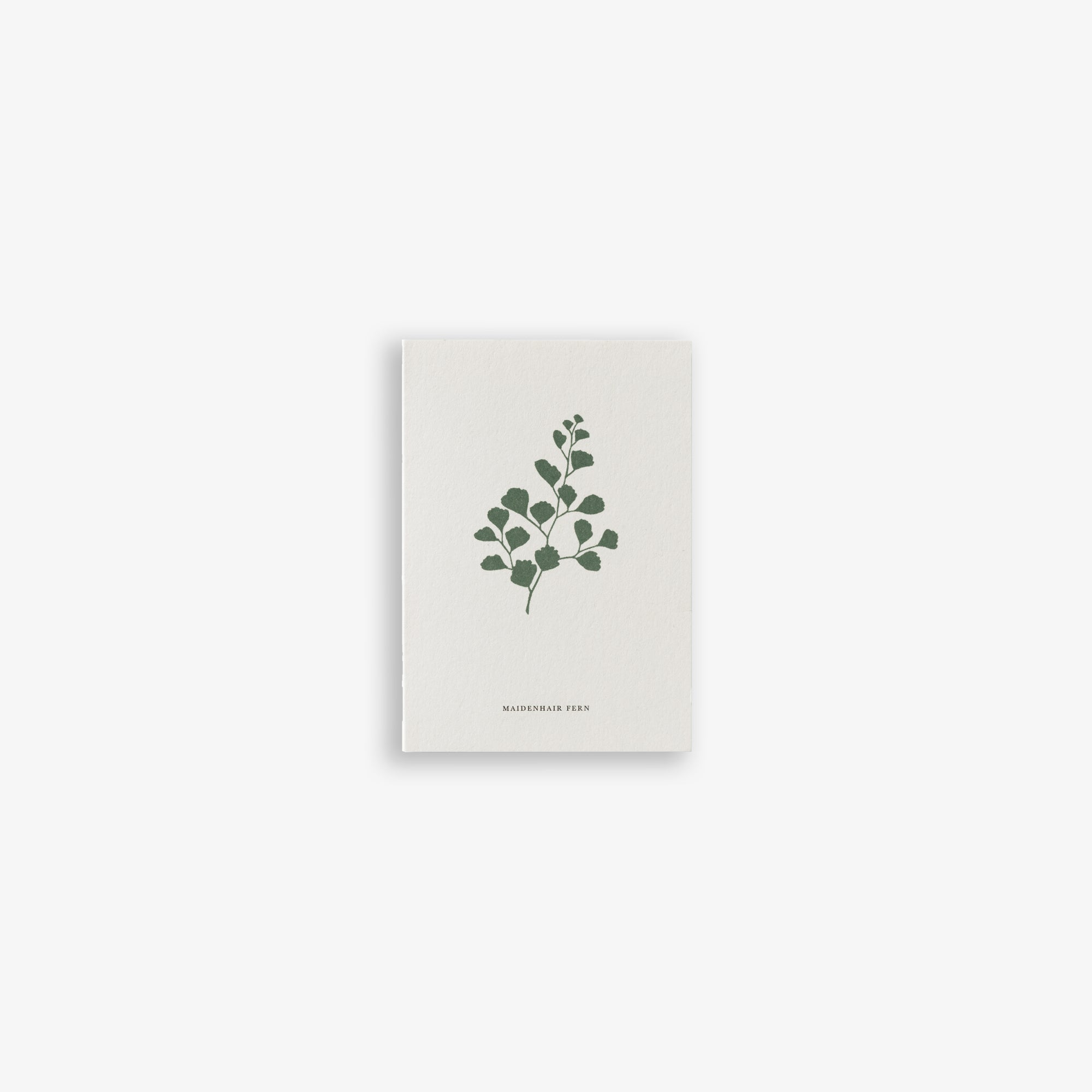 GREETING CARD A7 / FERN