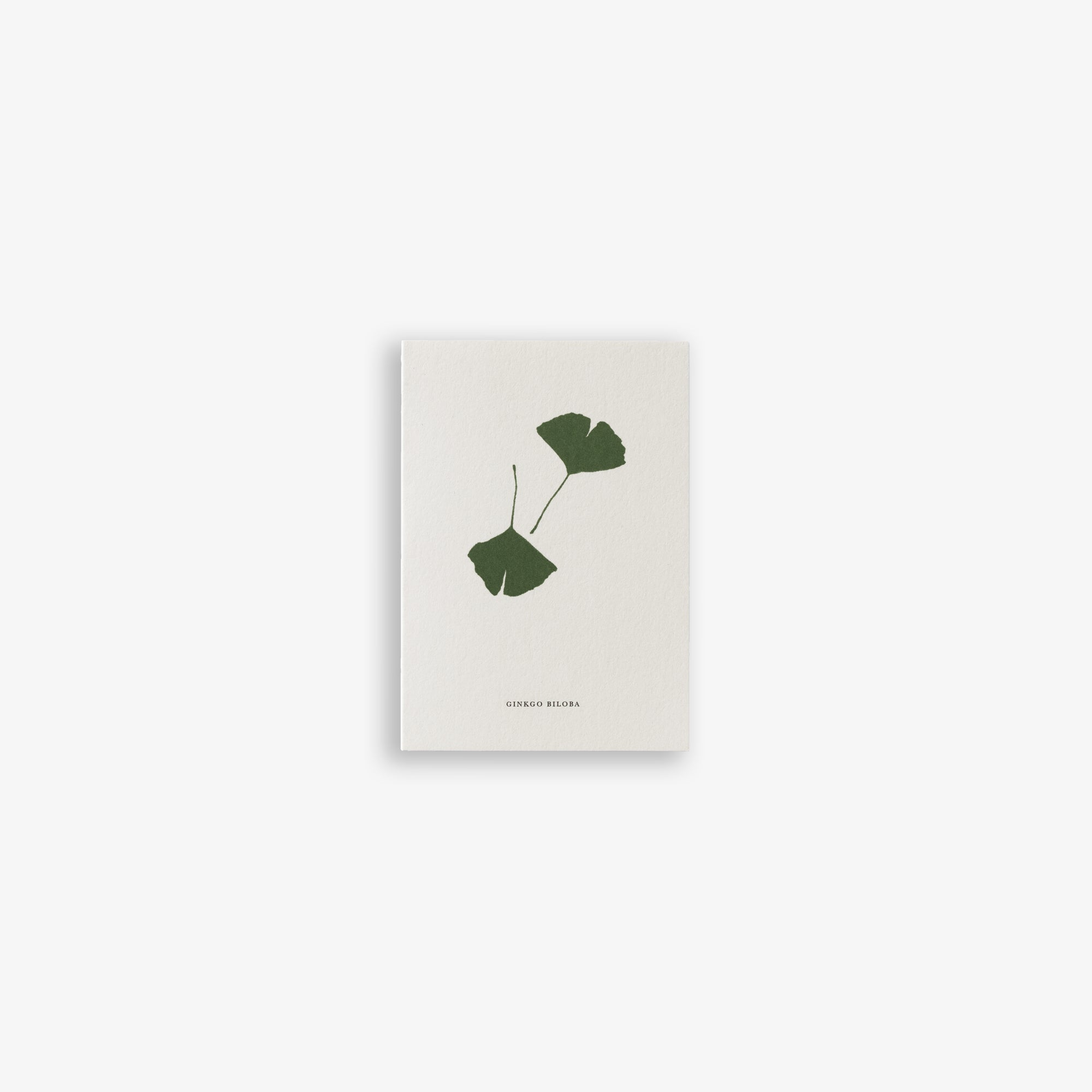 GREETING CARD A7 / GINKGO