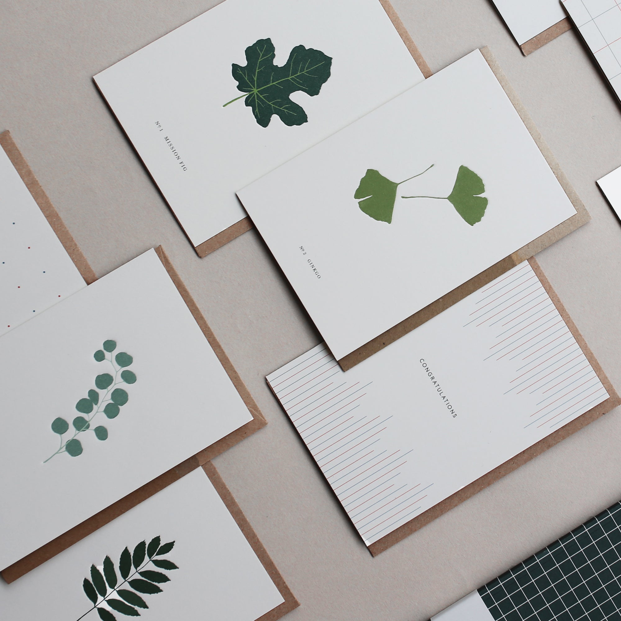 GREETING CARD SET / BOTANICAL