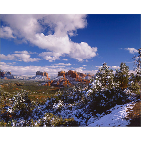 Cathedral Rock Vista In Snow