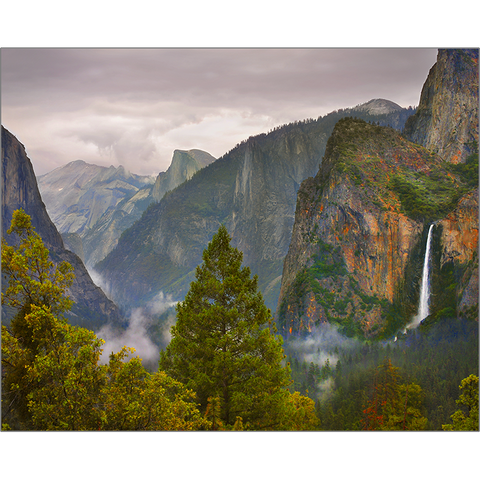 Fog Over Yosemite Valley