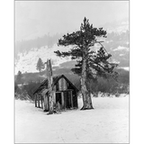 Old Cabin In Snow