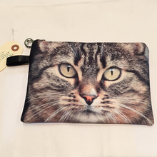 CAT POUCH (Brown Tabby)