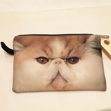 CAT POUCH (Persian Cat)