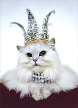 CAT GREETING CARDS (Princess Cat/ Happy Birthday)