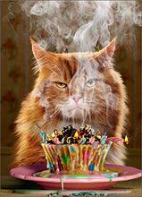 CAT GREETING CARDS (Cupcake & Cat/Happy Birthday)