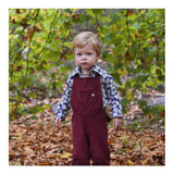 Beachside Shorts in Meadow