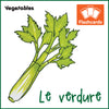 Vegetables Flashcards x 20 - Full Set