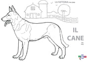 Il Cane - Worksheet