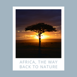 Africa, the way back to nature