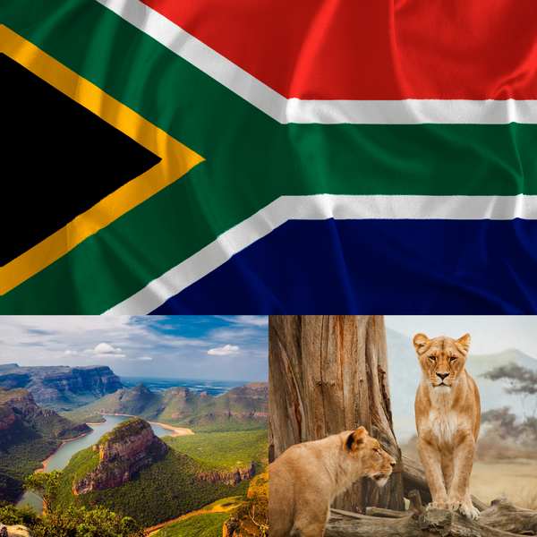 South Africa - Parks and Animals - THE SPACE gallery