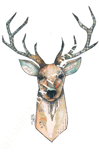 Stag A4 Print