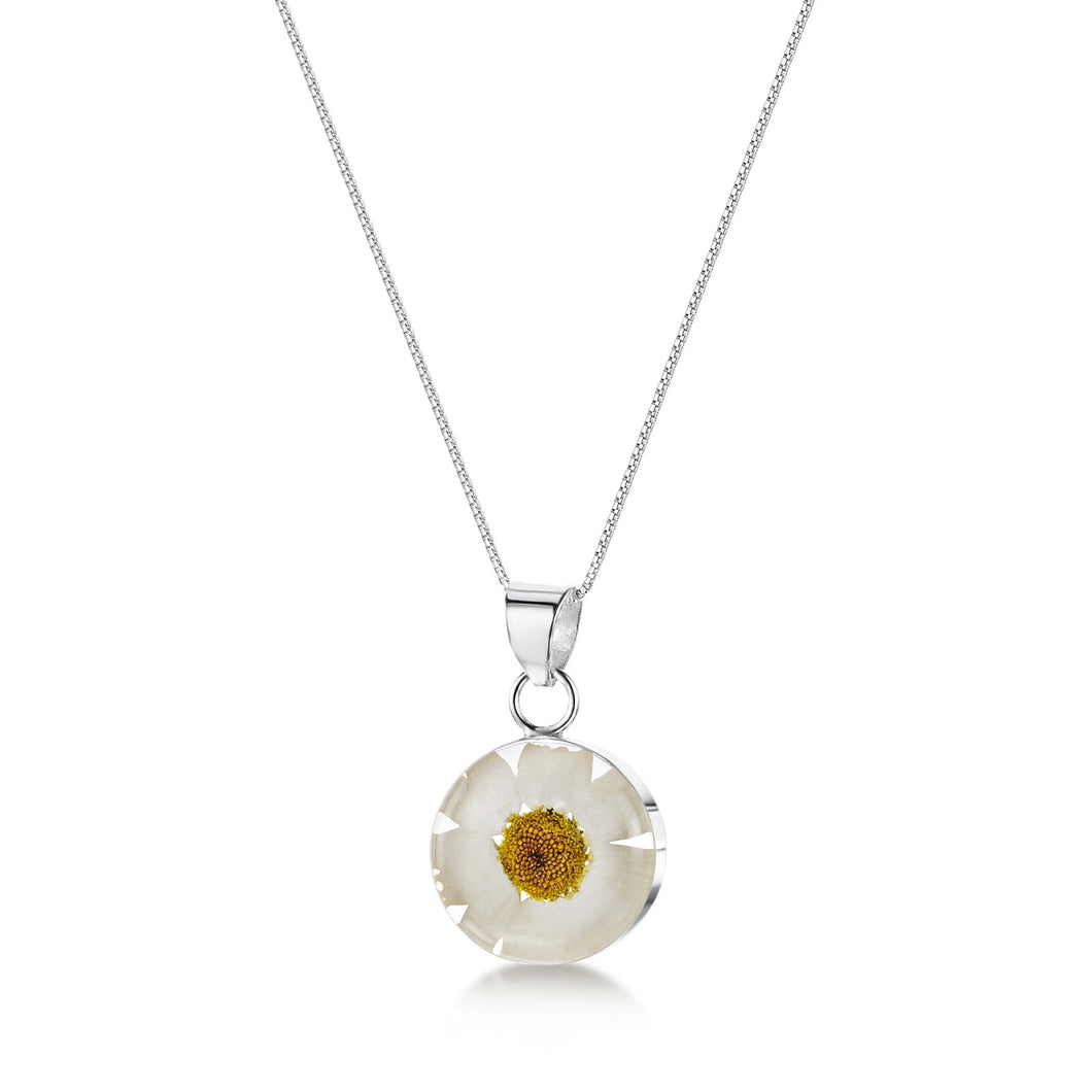 jewellery white daisy round pendant necklace made from real flowers