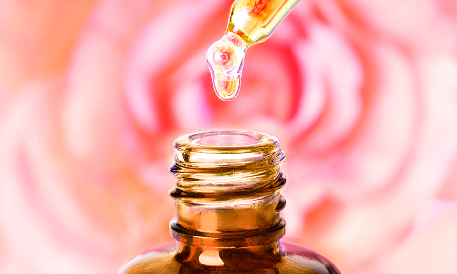 Rose vs. Rosehip: Differences, Benefits, and Uses