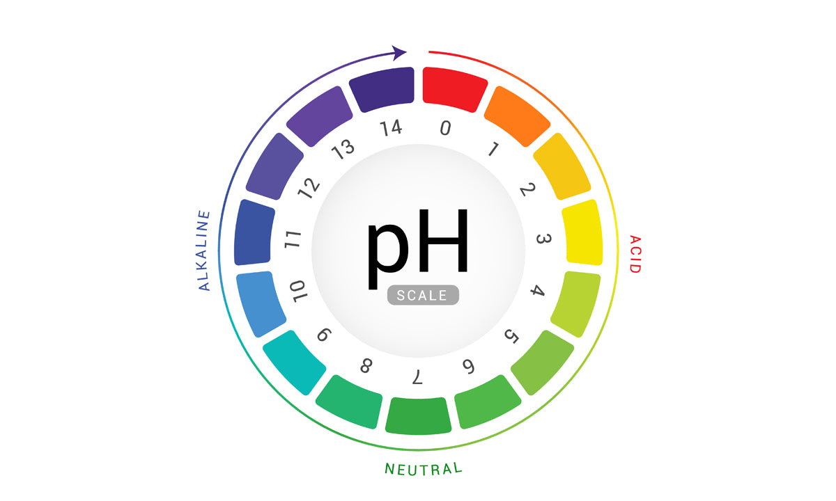 How to Balance Your Skin's pH